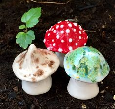 Excited to share this item from my shop: Fairy mushrooms -Three hand crafted ceramic toadstools - garden statue, gnome mushroom, aquarium decoration Flower Bed Designs, Garden Mushrooms, Clay Art Projects, Aquarium Decorations, Garden Statues, Flower Frame, Clay Pots, Fungi, Garden Art