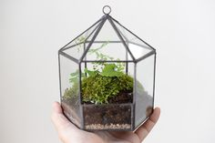 SOLDER TERRARIUM & PLANTERS *This listing is for product code 'S346'   _______    This beautiful terrarium is approximately 12cm x 14cm x 16cm and glass is 3mm thick with 'black' solder edge colour. Shining and faceted in full glory- made with glass and copper materials, catching and reflecting the light at every angle. Each Solder Terrarium is a work of art, employing a range of innovative glass-cutting techniques to bring you something truly unique. Hand crafted in the highest ma...