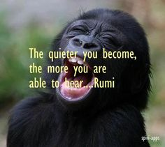 The quiter you become, the more you are able to hear....Rumi #Love it http://www.spiri-apps.com