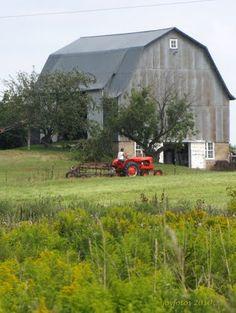 Raking hay beside the Barn