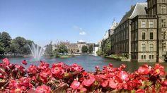 Es muss nicht immer Amsterdam sein! Den Haag, die kleine Schwester hat mindestens genauso viel zu bieten: Kulinarische Highlights, Grachten und sogar Strand