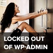 Step by step guide on what to do when you are locked out of WordPress admin (wp-admin) due to numerous situations like white screen of death, php errors etc