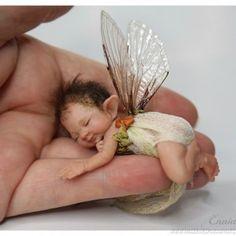 Baby Fairy, Love Fairy, Elfen Fantasy, Fantasy Art, Fantasy Fairies, Magical Creatures, Fantasy Creatures, Clay Baby, Beautiful Fairies