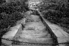 Stairway by Little Ugly at Glen Foerd Estate, #Philly  Photo Courtesy of Mike Slickster  www.glenfoerd.org