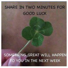 Make a wish ✨