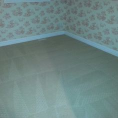 I am a Carpet Cleaning Services in Edmonton, Alberta, Canada. How To Clean Carpet, Mattress, Tile Floor, Sherwood Park, Cleaning Services, Stony, Furniture, Canada, Home Decor