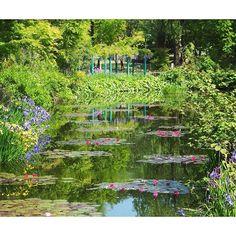 """モネの絵の世界へようこそ。高知県に行ったら必ず訪れたい観光スポットが""""北川村「モネの庭」マルモッタン""""。かの有名な印象派の画家クロード・モネが描いた絵の世界が完全に再現されたお庭です。"""