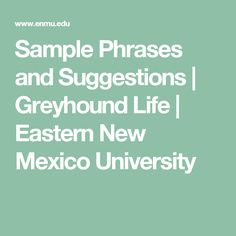 Sample Phrases and Suggestions | Greyhound Life | Eastern New Mexico University
