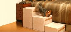 Puppy Stairs - Deluxe foam pet ramps & steps