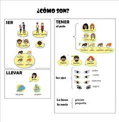Vocabulario de la descripción física (Colegio JS Pons)