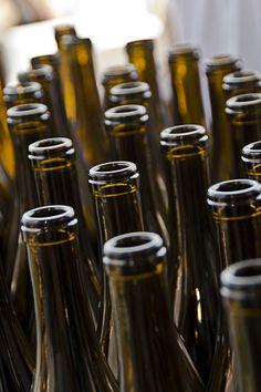 Bottling Shots at Fiddlehead Cellars
