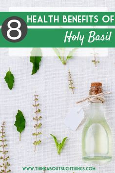 The health benefits of Holy Basil (tulsi) are amazing! From hormone balancing, to lowering blood sugar. This herb has powerful healing properties. Natural Health for the win!
