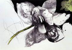 Tiina Kivinen - Tanssitaanko ensin,  mezzotinto syövytys Etchings, Moose Art, Animals, Animales, Animaux, Animal Memes, Animal, Animais, Dieren