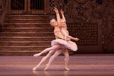 Steven McRae as The Prince and Miyako Yoshida as The Sugar Plum Fairy in The Nutcracker ©Johan Persson/ROH 2010 Bolshoi Ballet, Ballet Dance, Ballet Shoes, The Royal Ballet, Theater, Ballet Performances, Sugar Plum Fairy, Ballet Photography, Kids Events