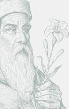 Fitoterapia - ziołolecznictwo - zioła - dr H. Różański Dr H, Osho, Herbal Medicine, Aromatherapy