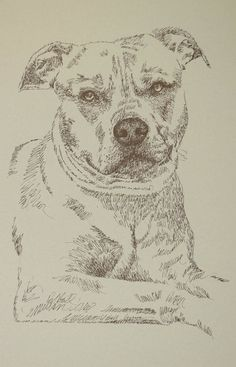 "Dog art drawn entirely from the words American Pit Bull Terrier. These unique fine art 11""x 17"" lithographs, created by drawing the name of the breed over and over, are hand signed and numbered in editions of 500 by internationally known artist Stephen Kline. Kline's dog art has generated tens of thousands of dollars for dog rescues worldwide. drawdogs.com http://drawdogs.com/product/dog-art/american-pit-bull-terrier-two-dog-portrait-by-stephen-kline/"