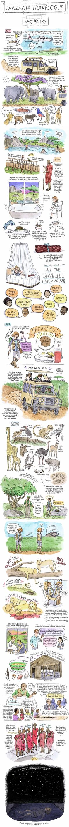 """Cartoonist Lucy Knisely shares part of the story of a recent trip through Qatar and Tanzania, which involves lion sightings, midnight swims, and many exclamations of """"wow""""."""