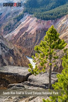 Knowing the best hikes in the U.S. is the best way to ensure you have fun on your hiking trip. Besides knowing the trails near you, you also learn the hiking difficulty of each to match your experience. Check out this roundup on the most popular hiking trails. #hikingtrails #hiking #hikingtips #outdoorsurvival #outdoor #survivallife