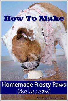 Homemade Frosty Paws! Save money with this easy ice cream treat for dogs! Only 3 ingredients! #diy #dogs #homemade