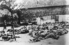 German soldiers standing by corpses after a mass execution in Lidice, Czechoslovakia, in June of 1942. In all, some 340 people from Lidice died because of the German reprisal -- 192 men, 60 women and 88 children. The village was set on fire, the rubble was bulldozed, and Lidice was erased from the land. Years later, a smaller new village of Lidice was built near the site of the old one. (LOC)