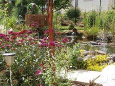 un jardin de rêve