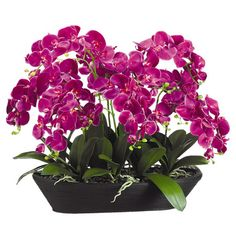 Faux orchid an oval bamboo pot. Product: Faux floral arrangementConstruction Material: Silk and bambooCo...