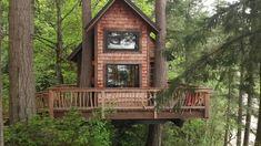 Vashon Island, Tiny House Plans, Ocean Views, Treehouse, Glamping, Cabin, Tiny Houses, House Styles, Home