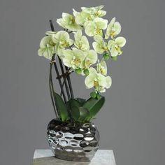 Orchidee artificielle 3 hampes en pot ceramique Argent H 55 cm Crème v