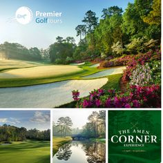 """White Dogwood. Golden Bell. Azalea. These are the three holes that make up Augusta's iconic """"Amen Corner"""", nicknamed as such after Arnold Palmer's spectacular 1958 Masters win. Don't miss the opportunity to see the world's best play at Augusta on our US Master's tours in April 2016 goo.gl/4L9vN4  #golf #amencorner #augusta #premiergolf Golf Tour, Masters, Amen, Opportunity, Golf Courses, Corner, Tours, Play, World"""