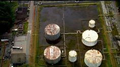 G1 - Imagens aéreas mostram água parada em piscinas e lajes de prédios em SP - notícias em São Paulo