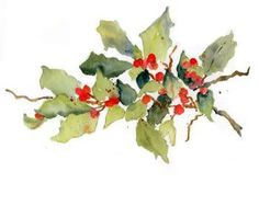Holly berries in Watercolor - kristtjørn - jul - christmas: