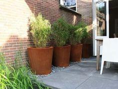 De cortenstaal plantenbak Cado is een stoere plantenbak met een prachtige tijdloze uitstraling. De natuurlijke kleur en de dubbel omgezette bovenrand geven de plantenbak een luxueuze en tijdloze uitstraling