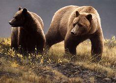 "Robert Bateman Presents ""Alaska Light - Grizzly Bears"" Bear Paintings, Wildlife Paintings, Nature Paintings, Wildlife Art, Original Paintings, Canadian Painters, Canadian Artists, Minnesota, Amazing Animal Pictures"