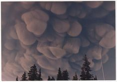 """It was the most haunting thing I've ever seen. It started as a small cloud over the volcano, then grew into a disk, then expanded to cover the whole sky, which is when it started to look like this. Then ash started to fall and it was dark in the middle of the day. This was in 1986. My mom took the photos and I scanned them."