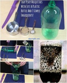 How to Trap Mosquitoes and Stop them from Ruining Your Outdoor Fun - DIY & Crafts Mosquito Trap Homemade, Homemade Fly Traps, Diy Mosquito Trap, Mosquito Spray, Mosquito Killer, Fly Repellant, Insect Repellent, Mosquito Repellent For Home, Flies Repellent Outdoor