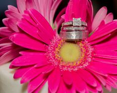 We love this bright, #colorful #wedding #ring shot from Bill Worley Photography. #weddingphotography #weddingblog #flower