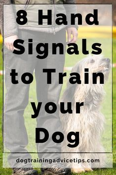 8 Hand Signals to Train your Dog. Dog Commands Training, Dog Training Tips, Leash Training, Dog Care Tips, Pet Tips, Pet Care, Easiest Dogs To Train, Dog Training Techniques, Dog Facts