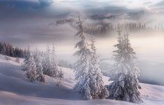 Snow, snow, snow...[On Explore]