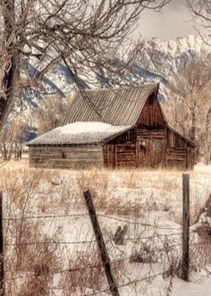 Love the mountains, barn, fence, the whole picture!