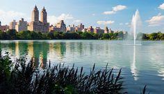 Central Park, #NYC #NewYork #iGottaTravel