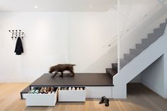 These stairs by the front door have storage underneath them, perfect for keeping shoes hidden away.