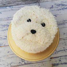 Dog Cakes, Girl Cakes, Cupcake Cakes, Fancy Cakes, Cute Cakes, Puppy Cake, Animal Cakes, Birthday Cake Girls, Novelty Cakes