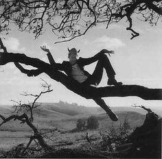 Tom Waits by Anton Corbijn