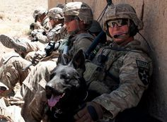U.S. Army Sgt. Matthew Hudson, 2nd Squadron, 1st Cavalry Regiment, 2nd Infantry Division, rests with a tactical explosive detection dog named Satin in Zabul Province, Afghanistan.