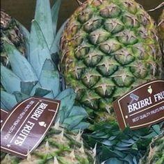 Piñas de Costa Rica Bribrifruits Mercabarna Mercamadrid Piñas ,pineapples ,ananas de Costa Rica ,frutas tropicales ,fruits ,mercabarna ,piñasdecostarica, mercamadrid@bribrifruitscostarica #piñas #pineapple #pineapples #ananas #frutastropicales #dieta #nutricion #salud #costarica #caribe #puravida #instanfood #piñasdecostarica #fruterias #mercados #mercamadrid #mercabarna #mercasevilla #spain #bribrifruits #disfrutadelapiña