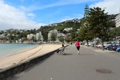 Take a closer look around Wellington with this collection of unique local photographs. Use our image galleries to inspire and help you plan your next Wellington trip. Us Images, Oriental, Explore, Beach, Water, Outdoor, Gripe Water, Outdoors, Seaside