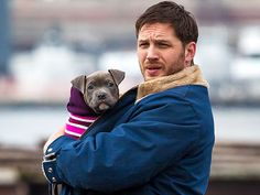 Awesome 29 Incredible Celebrity Dog Fathers