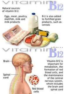Vitamin B-12 is essential to red blood cell formation and neurological health benefits and helps the body build genetic materials. Research continues into whether vitamin B-12 can help reduce the risks of dementia and age-related cognitive decline.