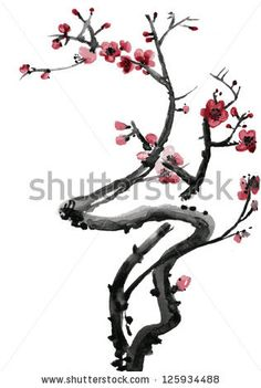 Realistic Sakura Blossom - Japanese Cherry Tree Isolated On White ...