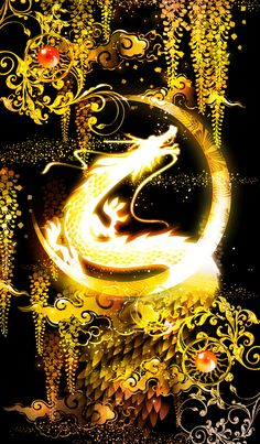 Dragon Wallpaper Iphone, Cute Galaxy Wallpaper, Fire And Ice Dragons, Dragon Cat, Gothic Wallpaper, Fantasy Art Women, Dragon Pictures, Iphone Wallpaper Tumblr Aesthetic, Fantasy Dragon